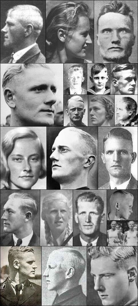 Resultado de imagen de razas geneticamente perfectas